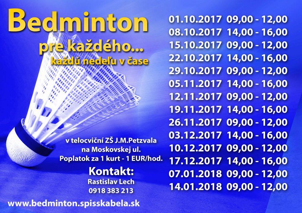 Bedminton-2017